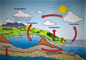Proses Terjadinya Hujan Anak Geografi Wajib Baca Ini